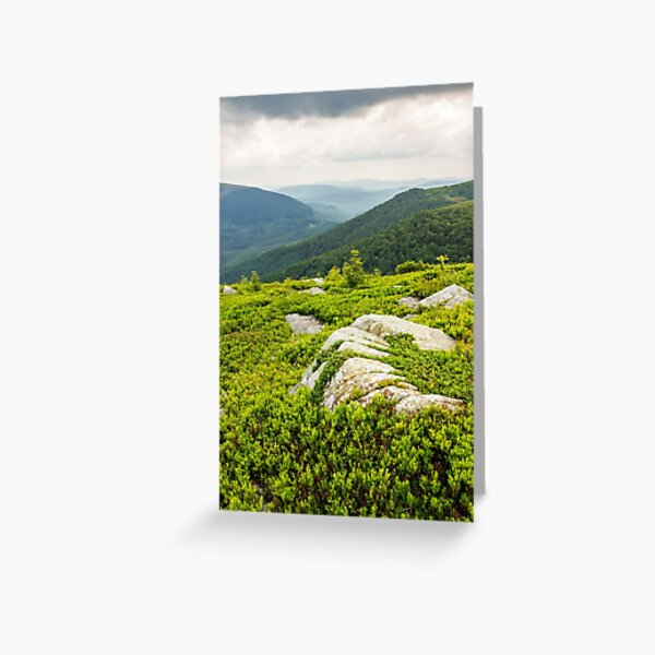 few trees and stones on hill side Greeting Card