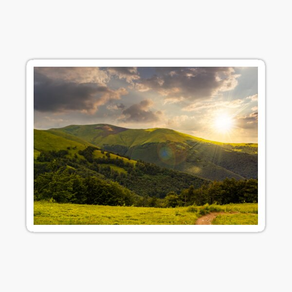 path through the forest in mountains at sunset Sticker
