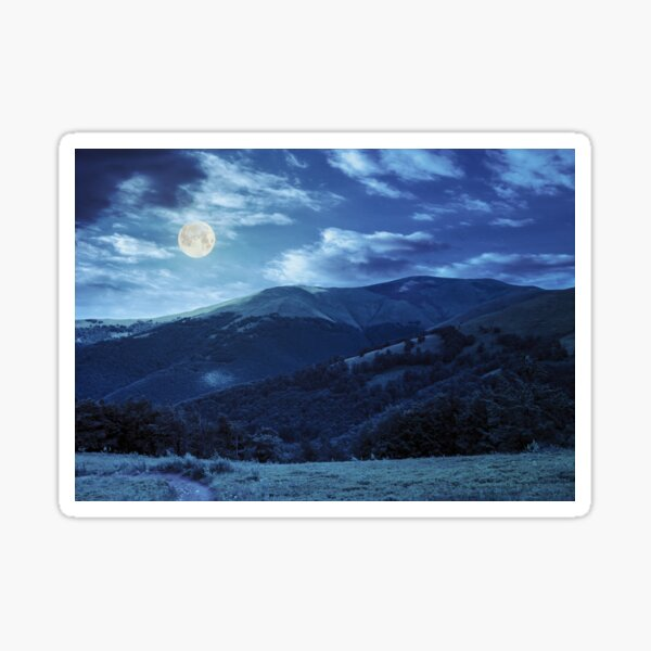 path through the forest in mountains at night Sticker