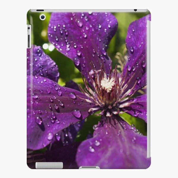 Dew Drops on Purple Flowers iPad Snap Case