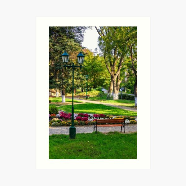 City lights in the park Art Print