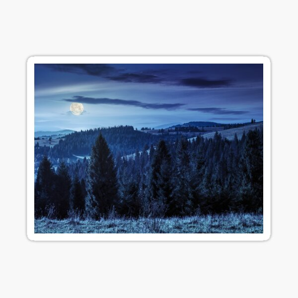 coniferous forest in  mountains at night Sticker