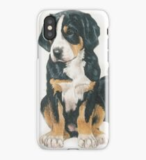 Greater Swiss Mountain Dog Puppies iPhone Case/Skin