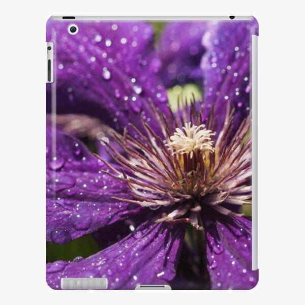 Dew Drops on Purple Flower iPad Snap Case