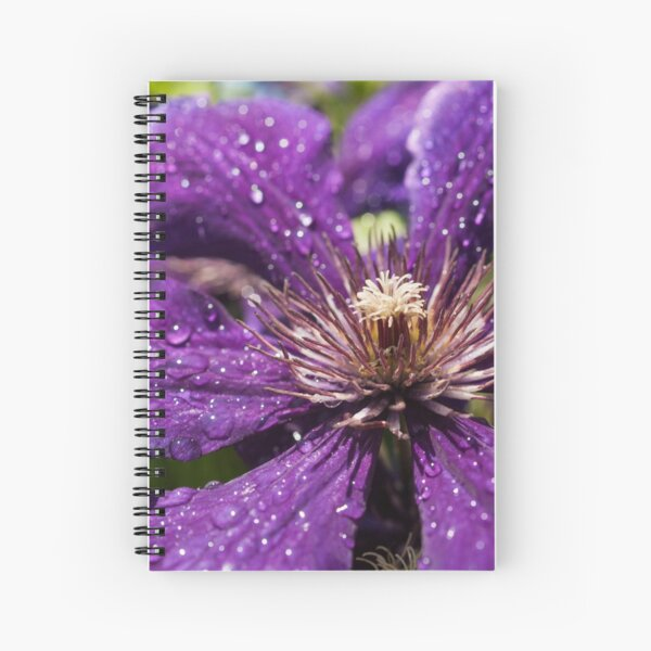 Dew Drops on Purple Flower Spiral Notebook