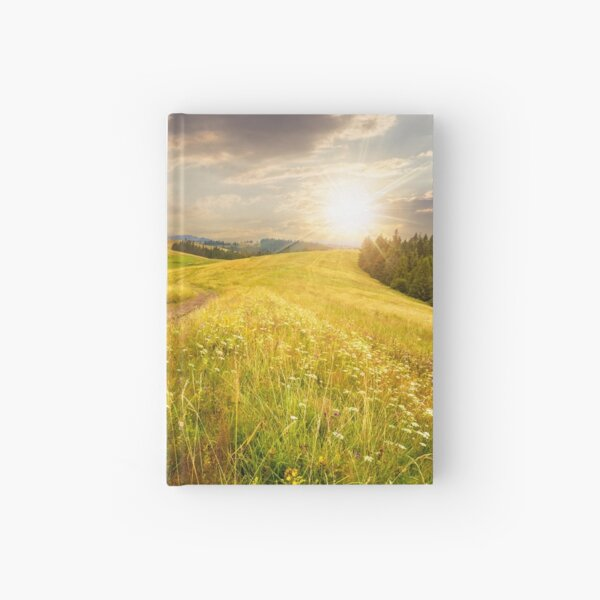 road through the meadow on hillside at sunset Hardcover Journal
