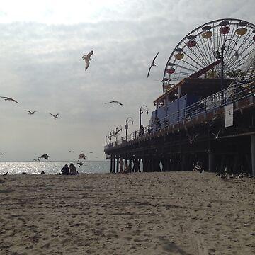 Santa Monica Pier by daisycakes4