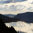 Columbia River by Jenny Miller