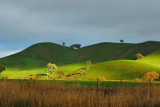 Serenity at Bonnie Doon by David Firth
