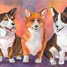 Welsh Corgi - pembroke and cardigan by doggyshop