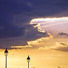 The Bird of Good Cheer - Pont Neuf, Paris  by David Lade