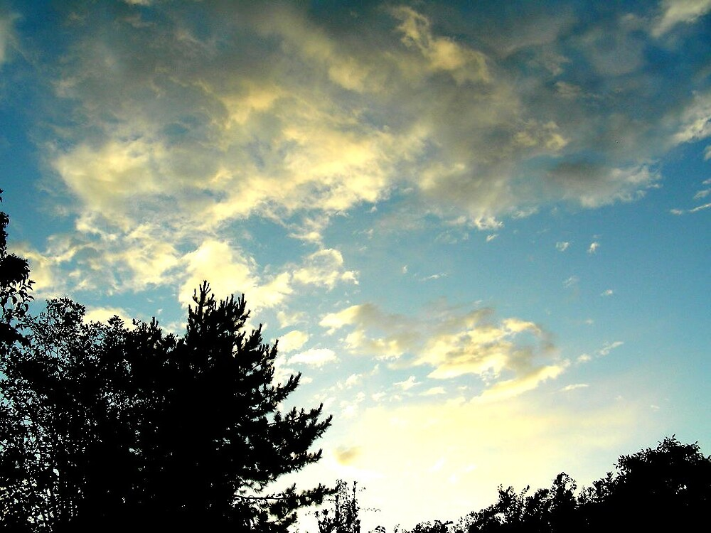 Beautiful Sky by Rosanna Jeffery