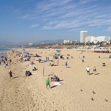 Santa Monica  by daisycakes4