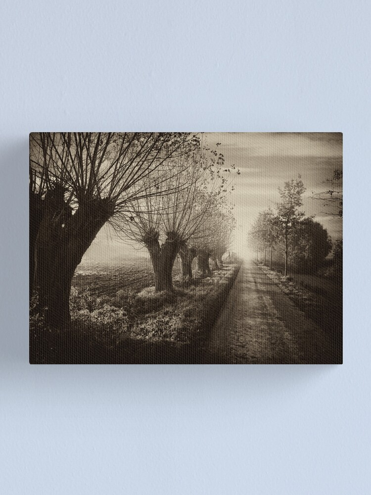 Alternate view of Path; willows b&w Canvas Print