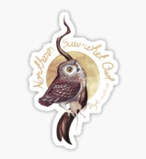 Northern Saw-whet Owl Sticker