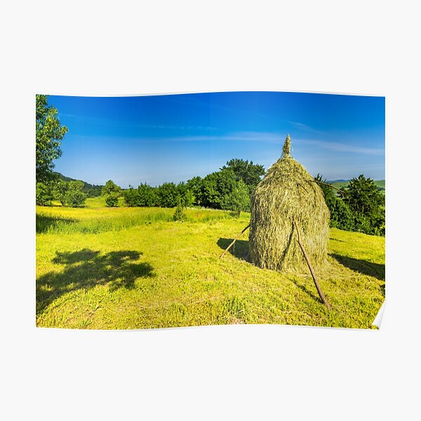 field with haystacks Poster