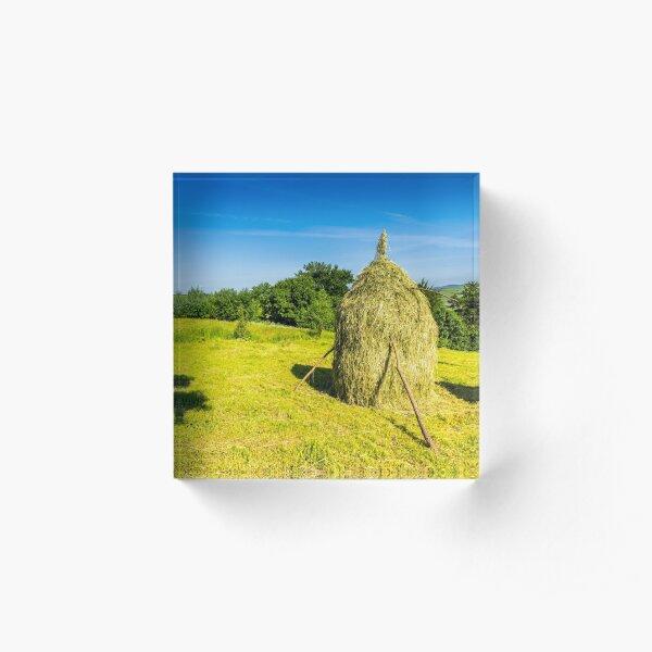 field with haystacks Acrylic Block
