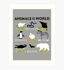Animals of the world Art Print
