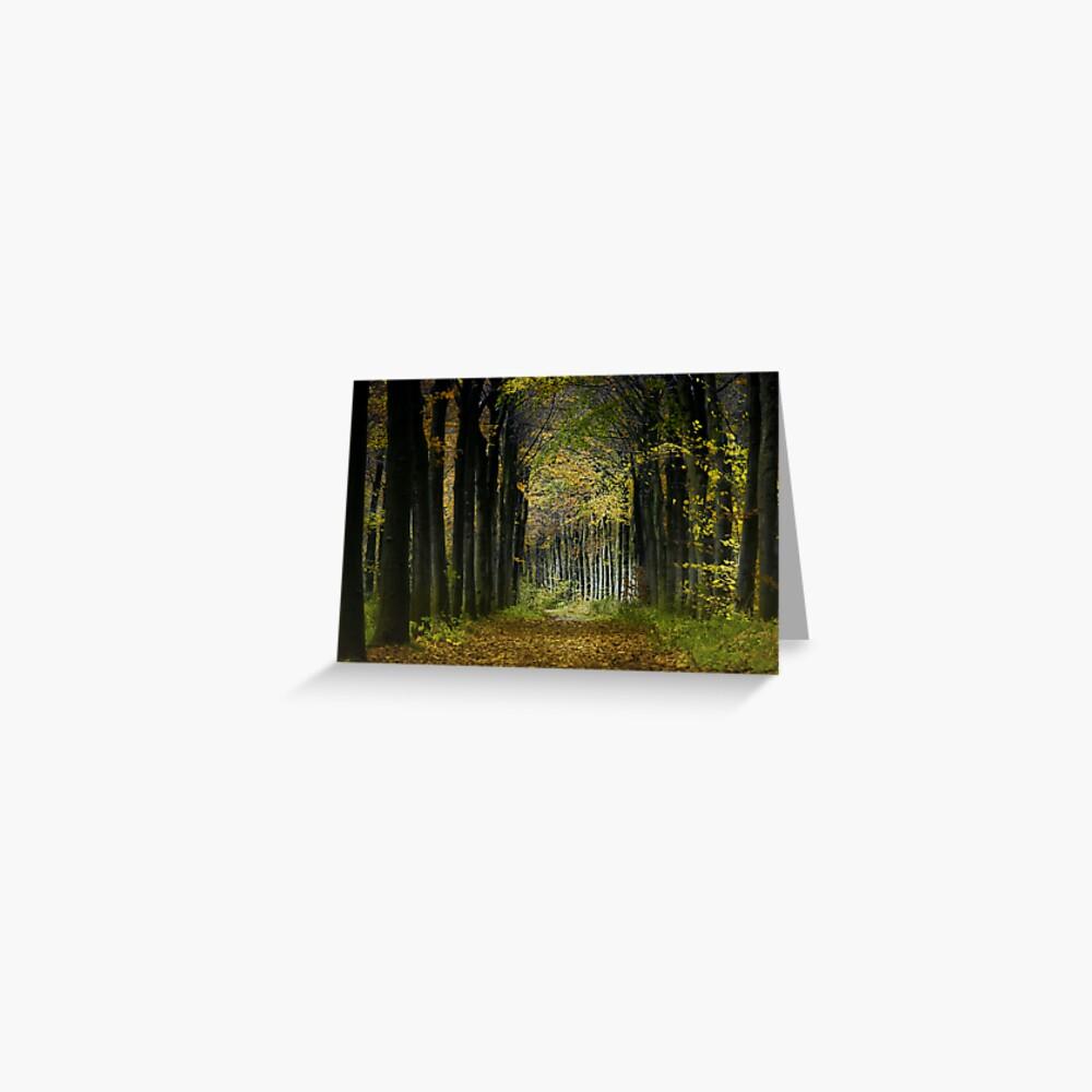Lane; trees Greeting Card