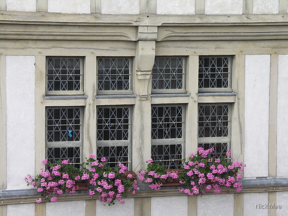 The Window by Nick Mee
