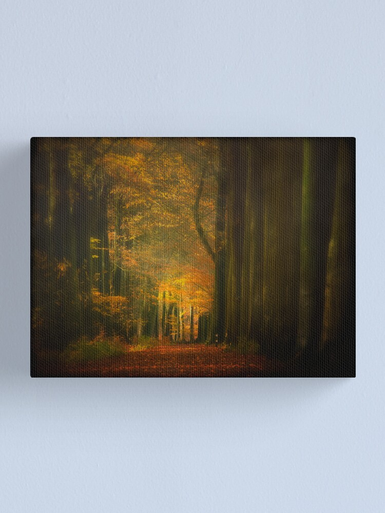 Alternate view of Light in woods Canvas Print