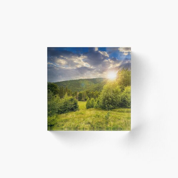 forest glade on hillside at sunset Acrylic Block