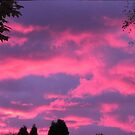 Pink autumn sky by hummingbirds