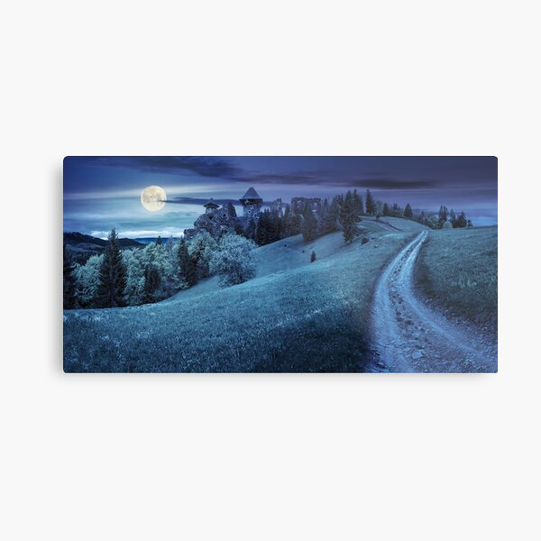 path to fortress ruins on hillside with forest at night Metal Print