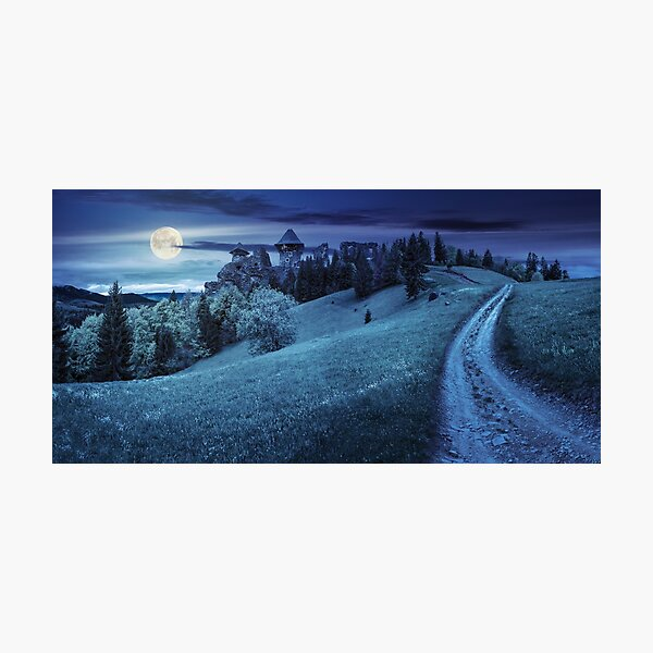 path to fortress ruins on hillside with forest at night Photographic Print