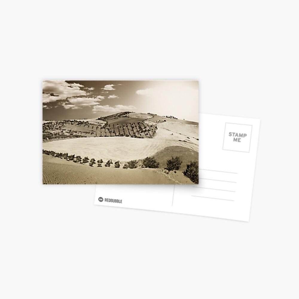 Layered landscape Postcard