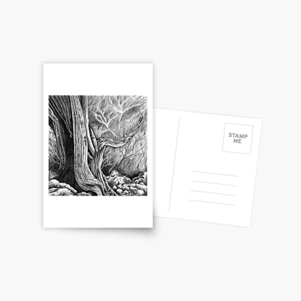 Skull Forest Postcard