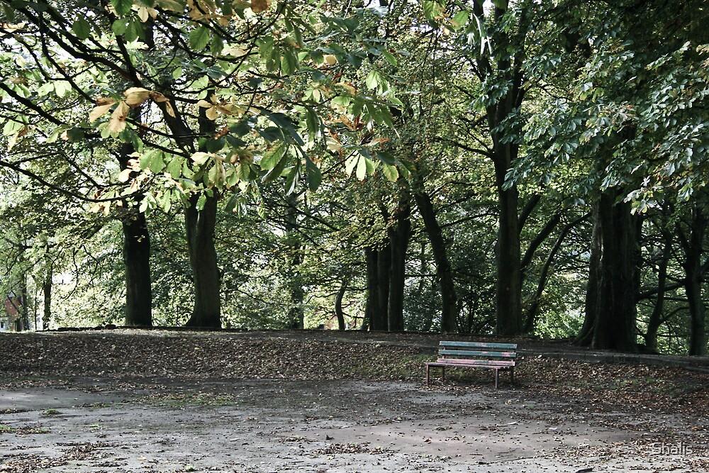 Fall by Shalis