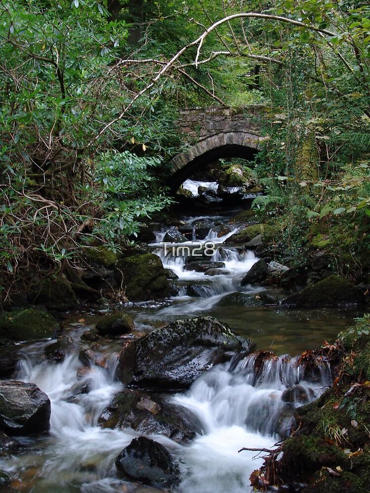 Welsh Stream  by Tim28
