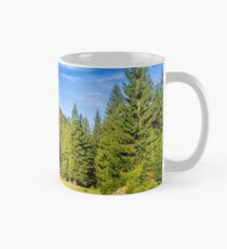 river with stones  in forest  Mug