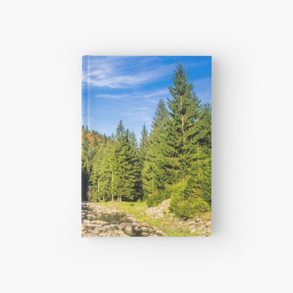 river with stones  in forest  Hardcover Journal