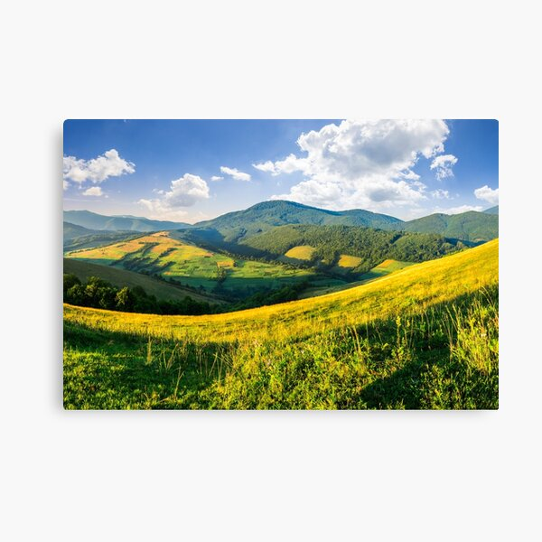 agricultural fields in mountains Canvas Print