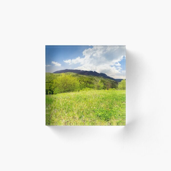 meadow near forest in mountains Acrylic Block