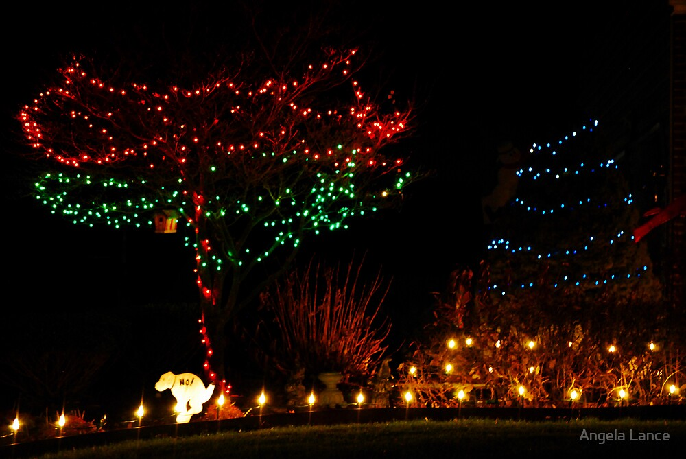 Holiday Lights 3 by Angela Lance