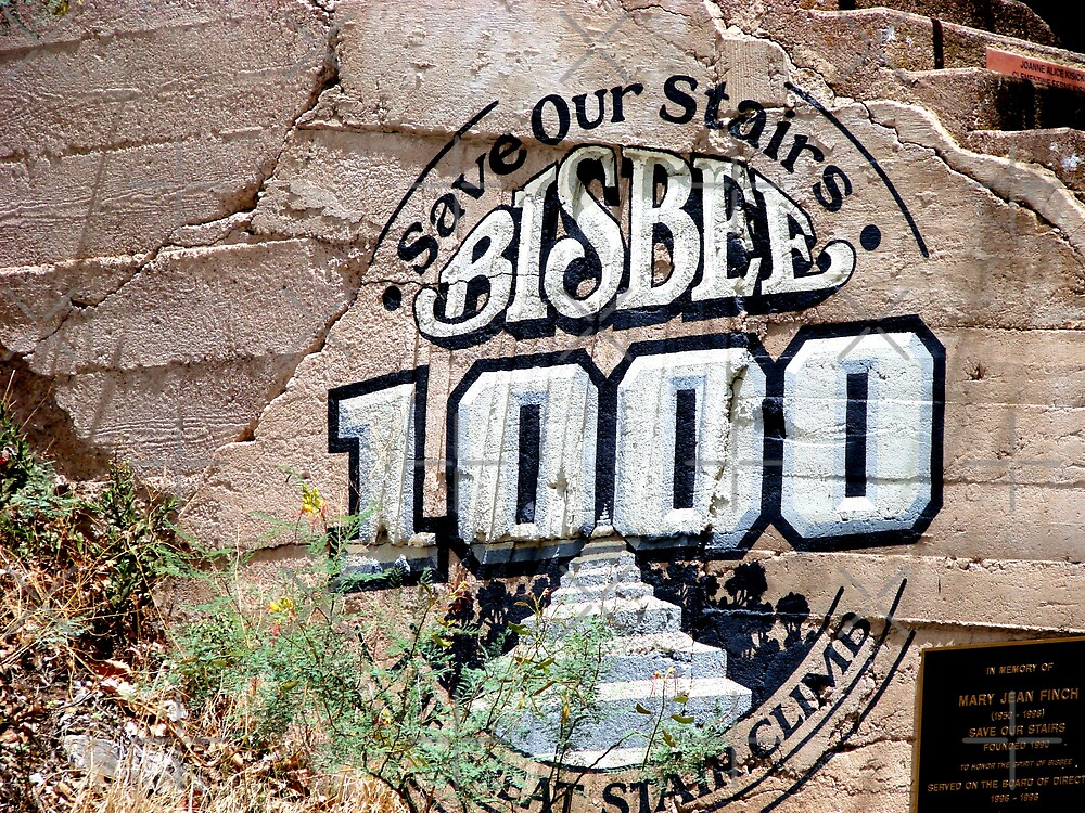Bisbee 1000 by Kimberly Miller