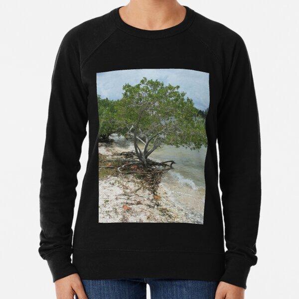 Mangrove Portrait DPG160517 Lightweight Sweatshirt