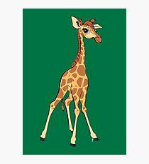 You're Having A Giraffe! Photographic Print