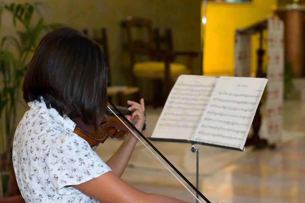 violinist by MadHorse