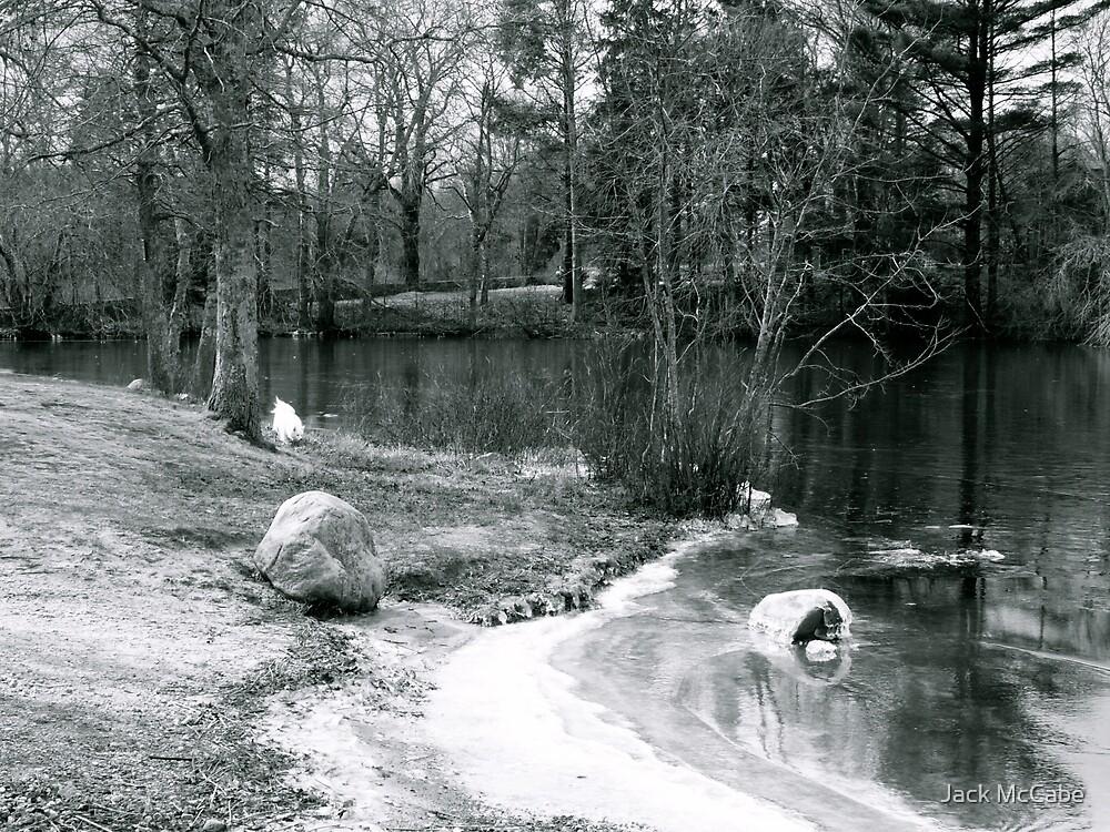 Ice on the Pond by Jack McCabe