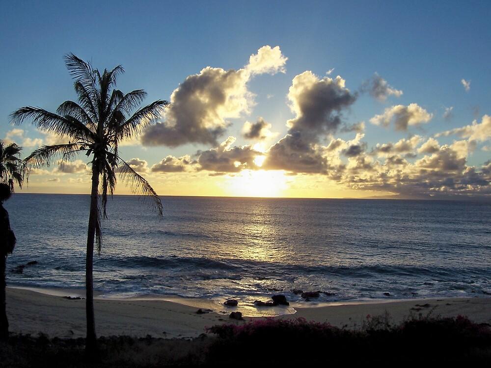 Molokai Sunset by revdrrenee