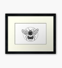 Bumble bee illustration  Framed Print