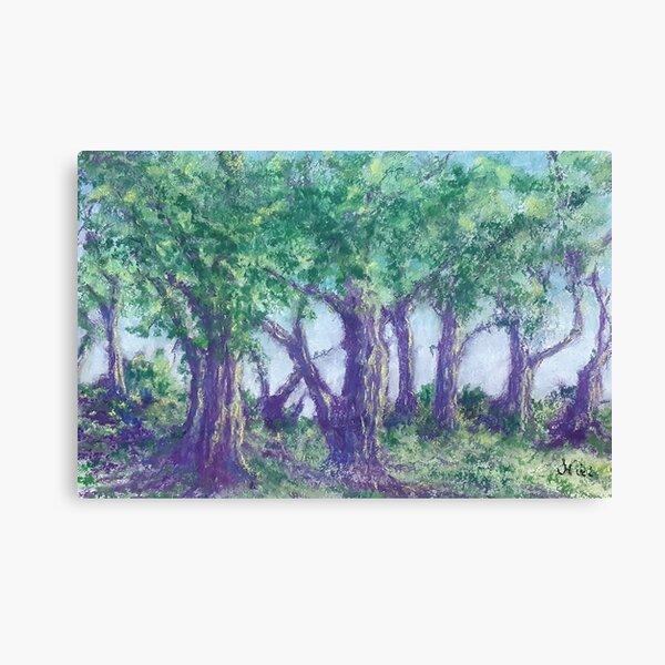 Oak Dance (pastel) Canvas Print