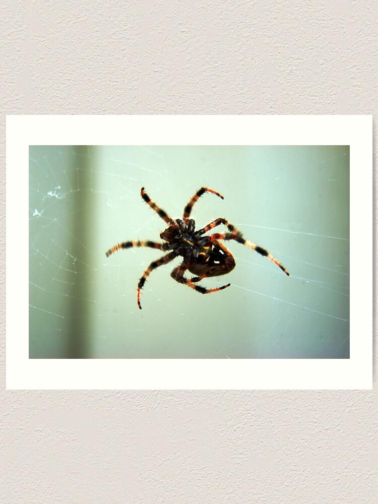 Alternate view of Spider Art Print