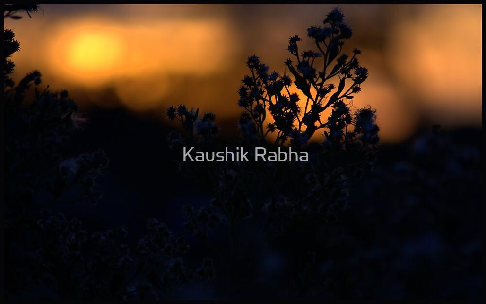 One Cold Evening 2 by Kaushik Rabha