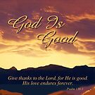God Is Good by Patricia Howitt
