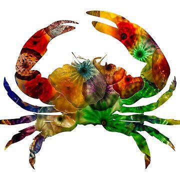 Crab by MrColgate